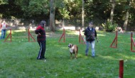 Agility-Training vom 16.09.2012